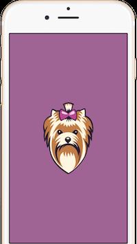 app1 Приложение Милана стрижка собак и кошек для смартфонов